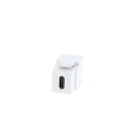 white USB Type C Keystone