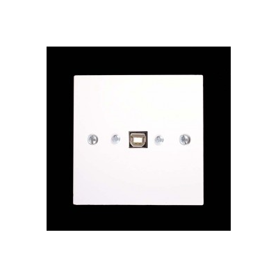 White Single Gang USB B-A Female Wall Plate.