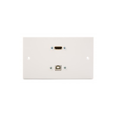 White Double Gang HDMI and USB B Wall Plate.