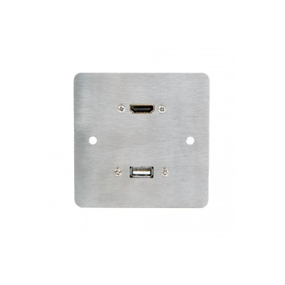 Stainless Steel SG Hdmi, Usb A Wall Plate.