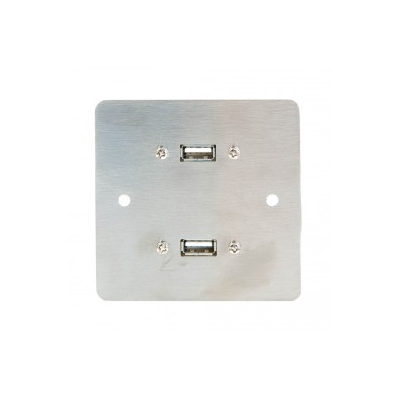Metal Sg Twin Usb A Coupler Wall Plate