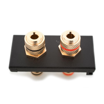 2 Speaker Euro Module. Red Black Binding Post