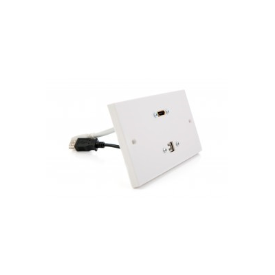 Double Gang Wall Plate Hdmi Usb B Plug And Play