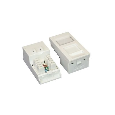 White Cat5e Euro Module. 25x50mm