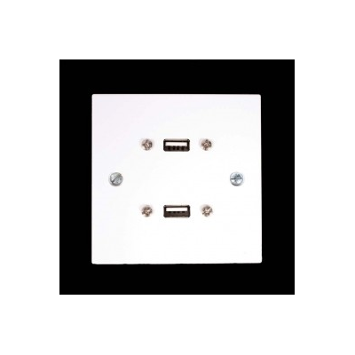 White Single Gang Twin USB A-A Female Wall Plate.