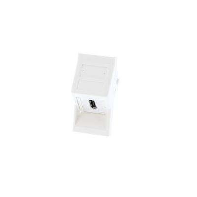 Angled White USB Type C Euro Module