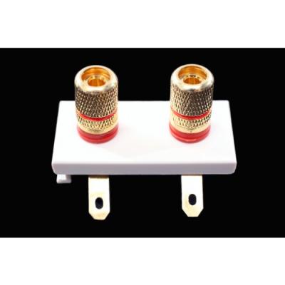 2 Speaker Euro Module. Twin Red Solder Tags