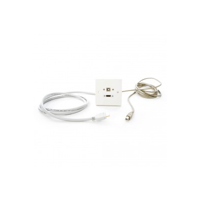 White Single Gang HDMI, USB B-B Wall Plate.