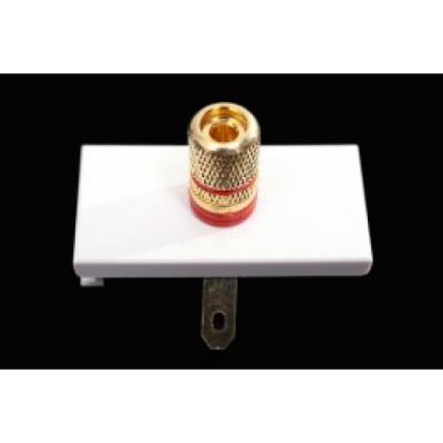 Red Speaker White Euro Module